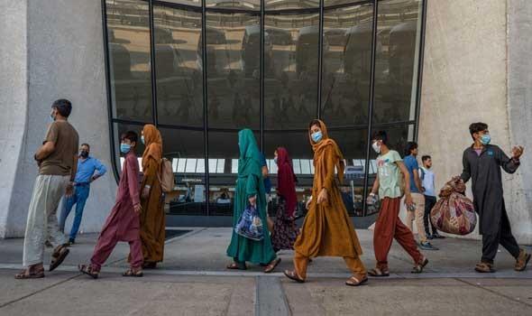 الدار البيضاء اليوم  - اليوم العالمي للمرأة القروية نساء الأرياف تساهم في تحقيق الأمن الغذائي